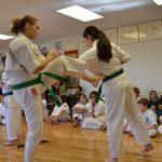 Etapas y niveles de bunkai de una kata