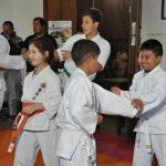 ¿El Karate vuelve violentos a los chicos?