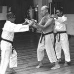 Sanchin kitae y el castigo físico